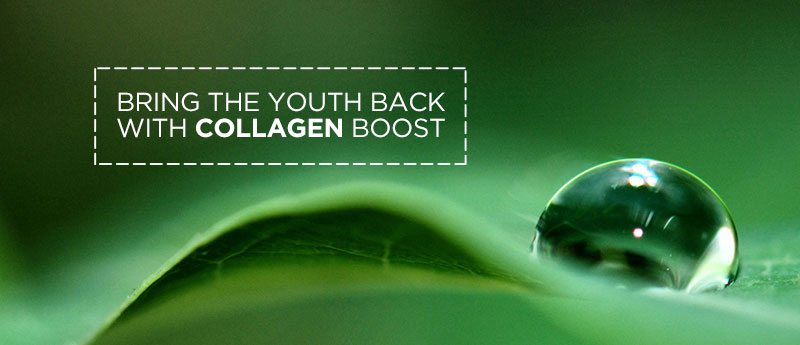Bring back skin elasticity with Collagen
