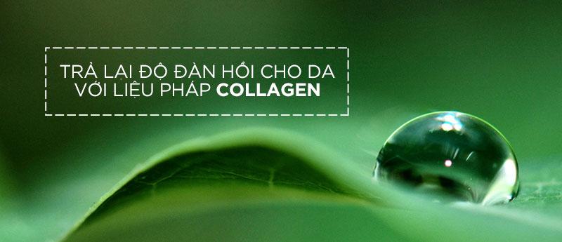 collagen trong chăm sóc da mặt chuyên sâu