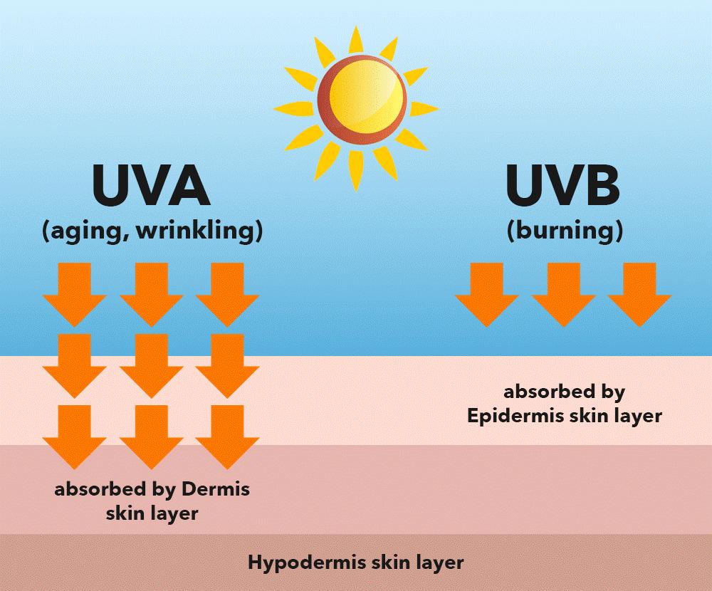 Tác động của UVA và UVB đến da